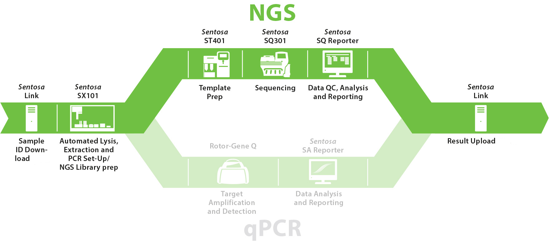 Products - Vela Diagnostics – NGS and PCR Solutions