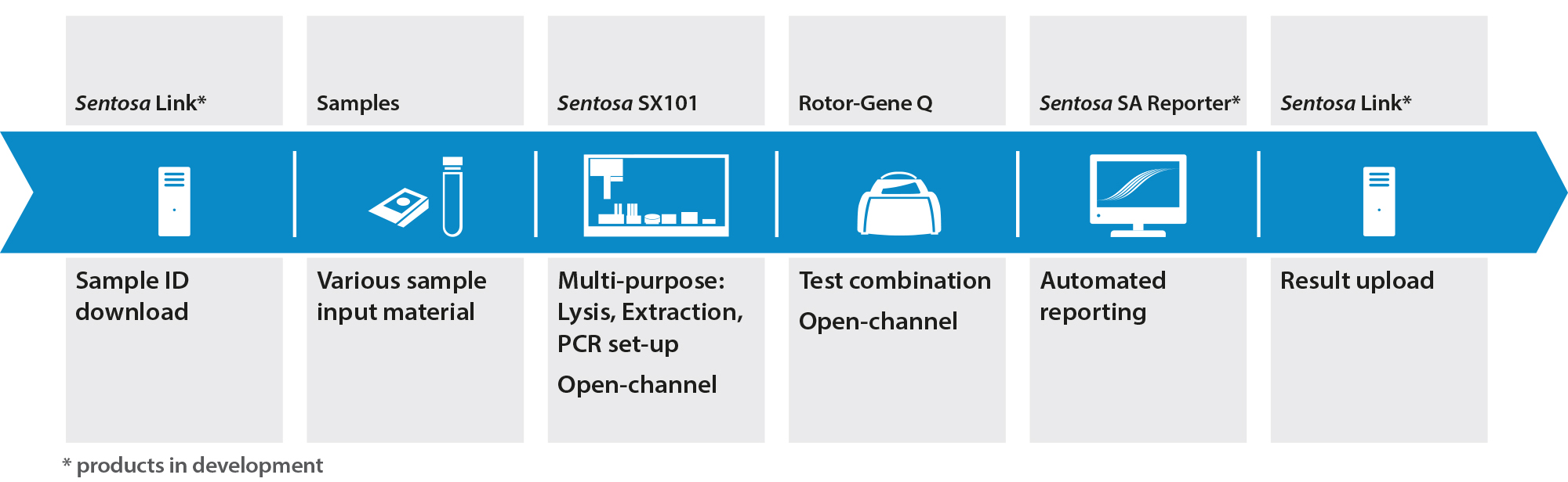 Real Time Pcr Vela Diagnostics Ngs And Pcr Solutions