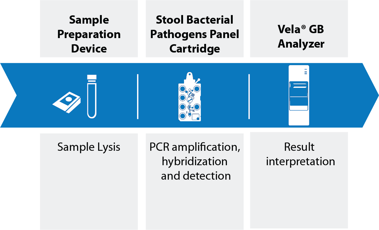 Product Details Page Vela Diagnostics Ngs And Pcr